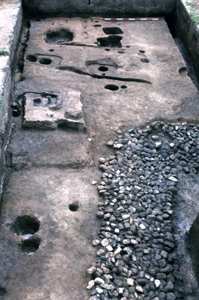 物部氏の豪族居館 天理市布留遺跡杣之内(アゼクラ)地区 5世紀